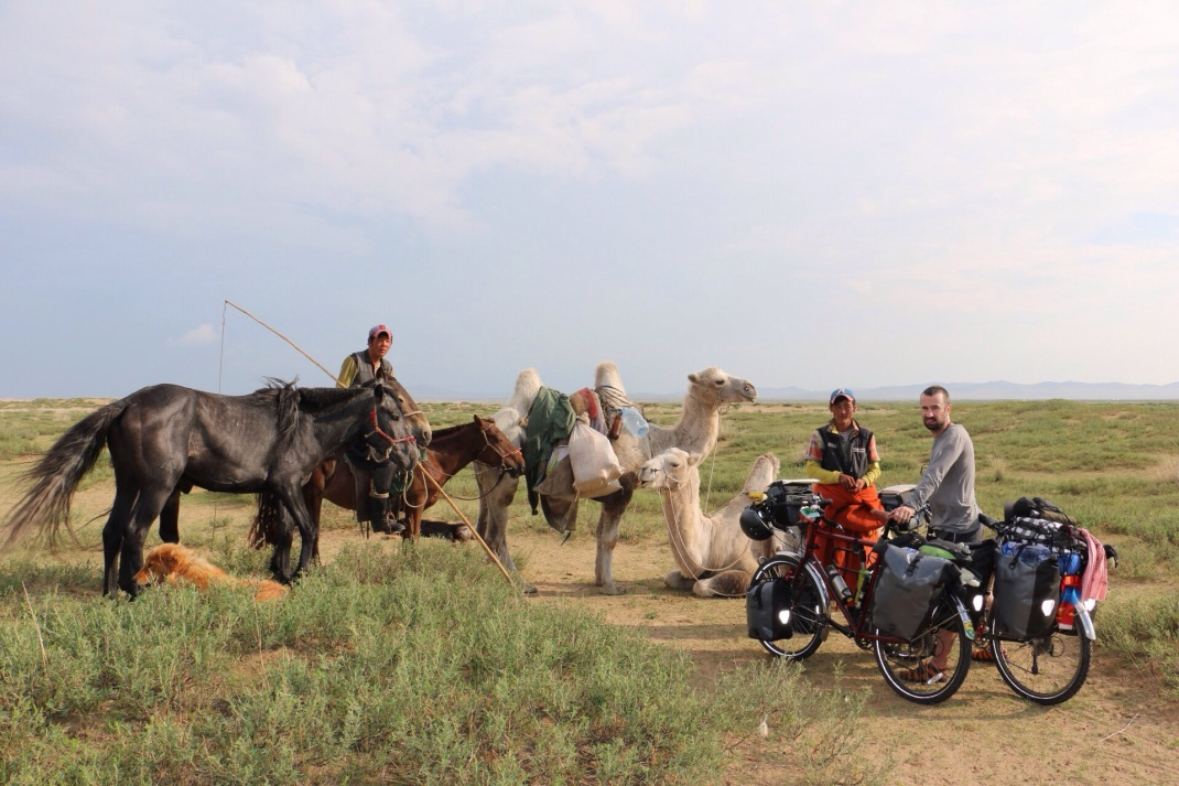 Mongolian herders on camels near gobi dessert. Cycle touring Mongolia.