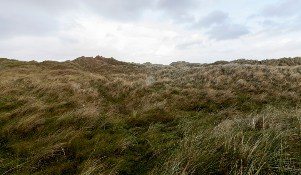 Sand dunes.wild atlantic way, sligo.