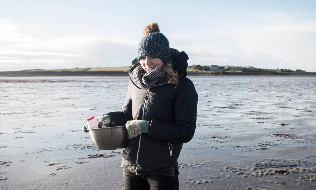 Razor Clam foraging on the Atlantic coast | Crank and Cog.