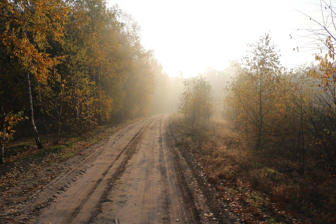 poland-track