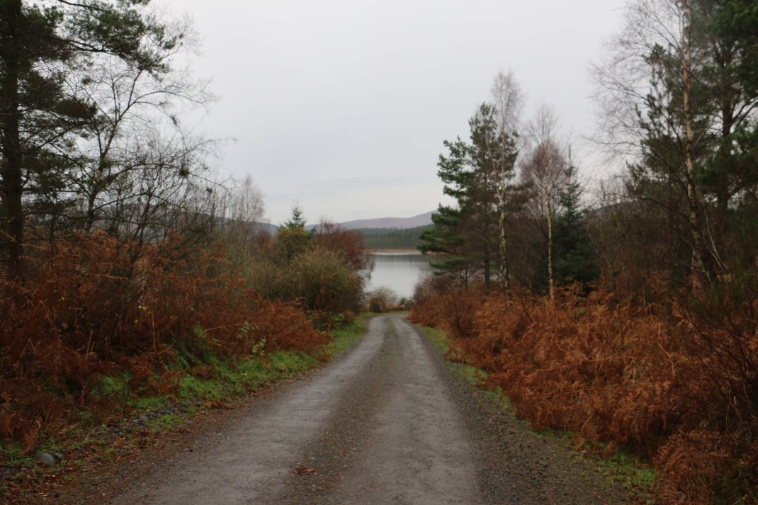 scotland-road