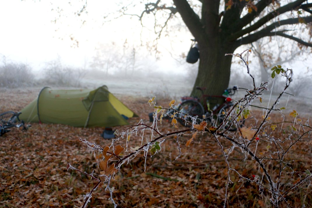 Wild camping site under a tree in the frosty morning