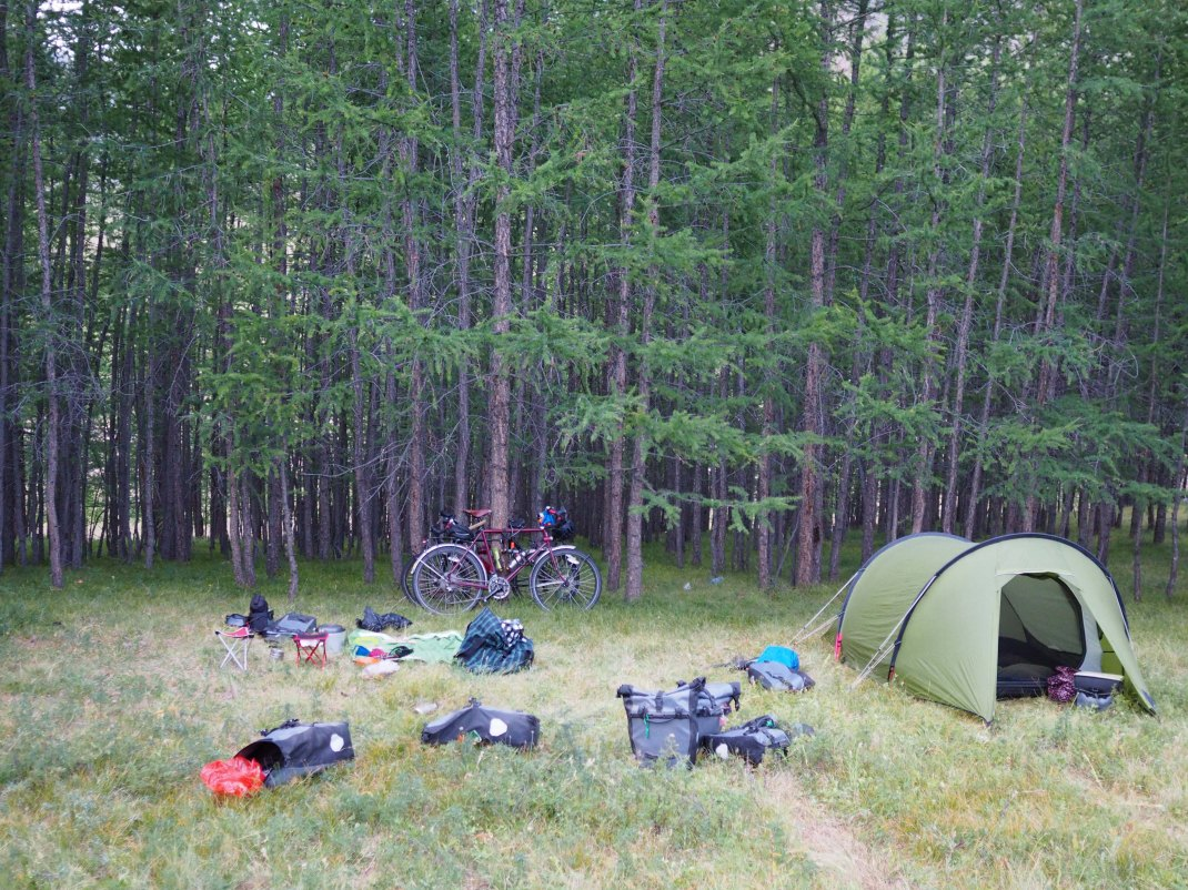 Wild camping on the edge of the woods while cycle touring.