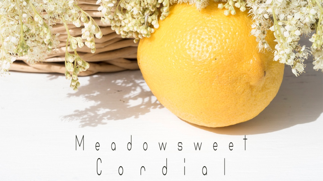 Meadowsweet Cordial with lemon | Crank & Cog