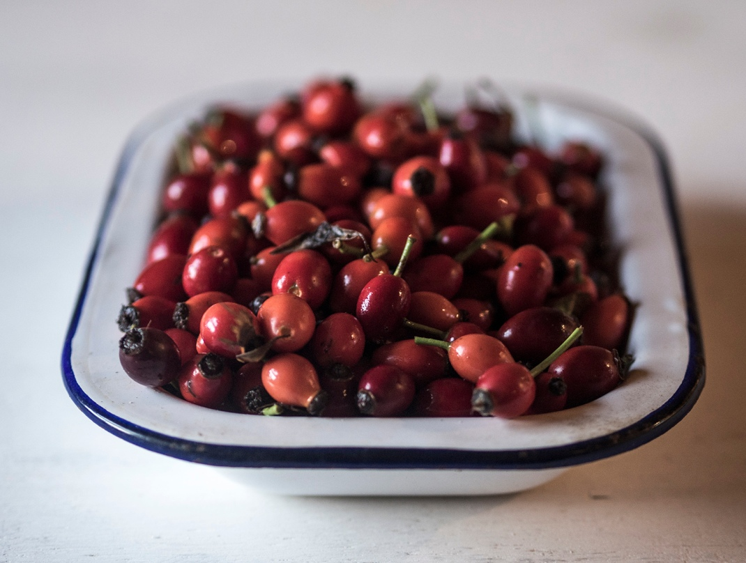 A tin of rose hips | Crank and Cog