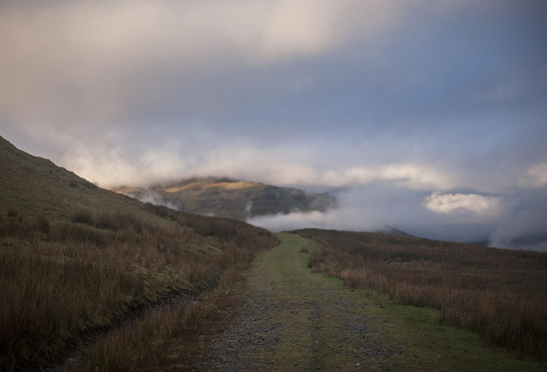misty arroo track